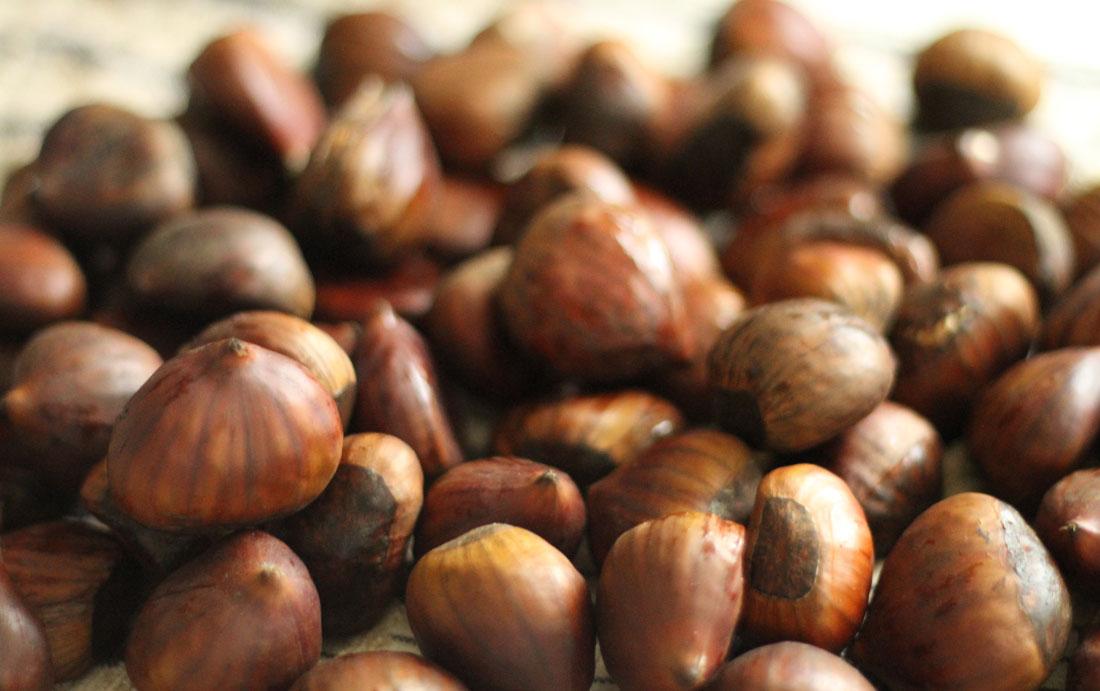 chestnut-festival.jpg