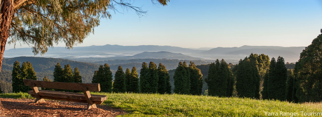 3 Reasons To Conference In The Yarra Valley / Dandenong Ranges Region