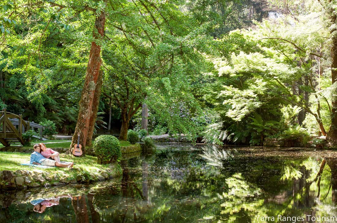 things-to-do-in-the-dandenong-ranges